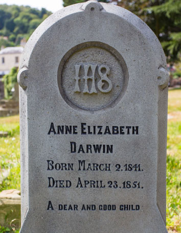 Anne Darwin's Grave